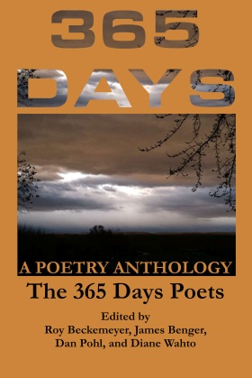365 Days Front Cover Image