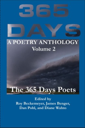 Front Cover 365 Days Vol 2